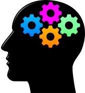 Cerveau rouage