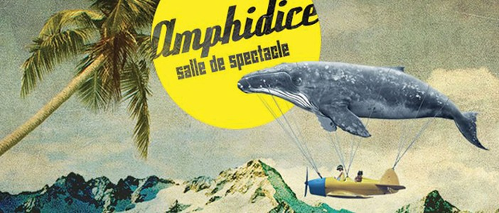 Lieu de culture : Amphidice